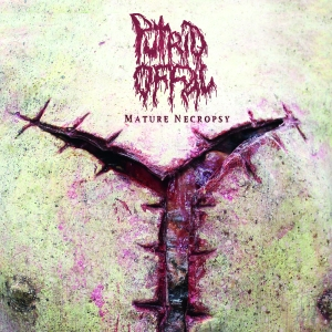 putrid offal record cover